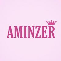 Descuentos de Aminzer