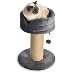 Chollo - Amazon Basics Torre en árbol con poste rascador para gatos 63cm   YS98793-1