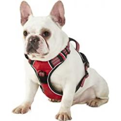 Chollo - Arnés Perro Antitirones para el color naranja y rojo de todos los tamaños