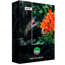 Chollo - Editor de Fotos Photolemur 3 Gratis para Windows y Mac