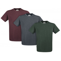 Chollo - Pack 3 Camisetas Dickies Hastings