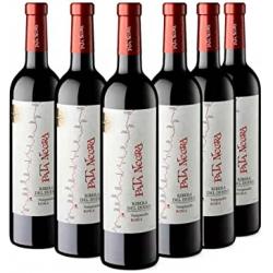 Chollo - Pack 6x Pata Negra Roble Vino Tinto Ribera del Duero (6x750ml)