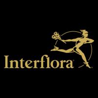 Ofertas de Interflora